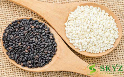 Sesame Seeds Exporter in India